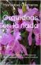 Orquídeas en la nada